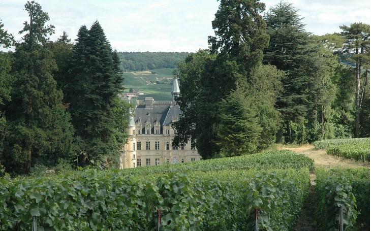 Le vignoble de champagne de la vall e de la marne d 39 avenay for Maison marne la vallee