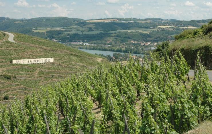 D 39 ampuis sisteron vall e du rh ne oeunotourisme - Salon des vins ampuis ...
